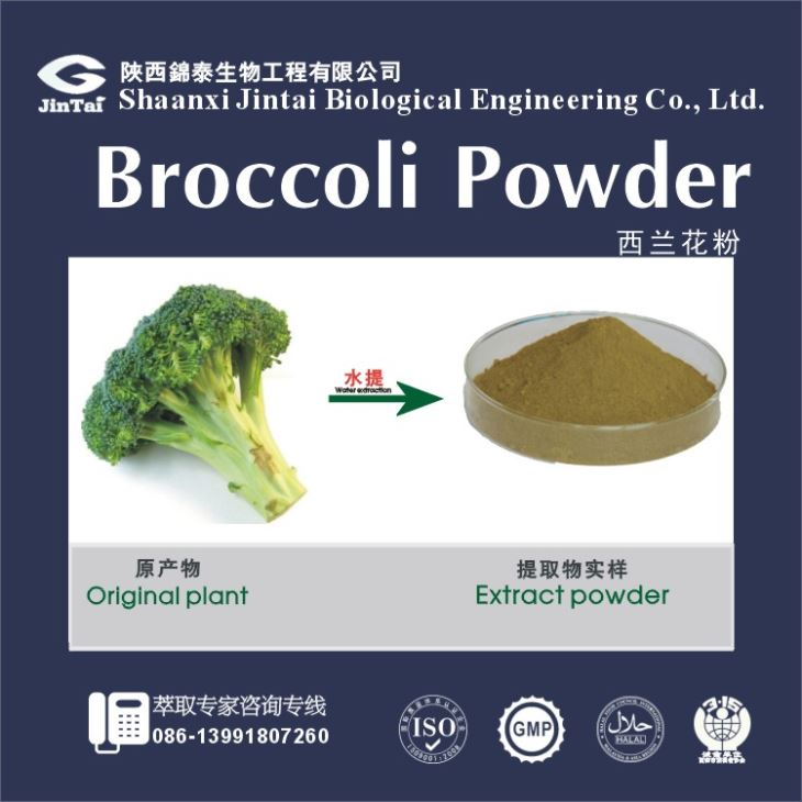 Natural Broccoli Sulforaphane Powder, Broccoli Sprout Powder, Broccoli powder with Best Quality