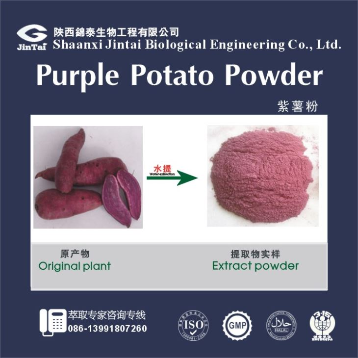 Natural Color Purple Sweet Potato Extract, Purple Sweet Potato Powder, purple sweet potatoe Powder
