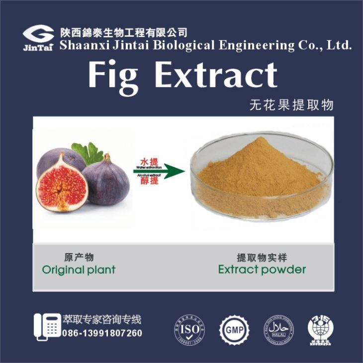 Hot sale Plant extract Fig fruit extract/Fig powder/Ficus carica figfruit extract