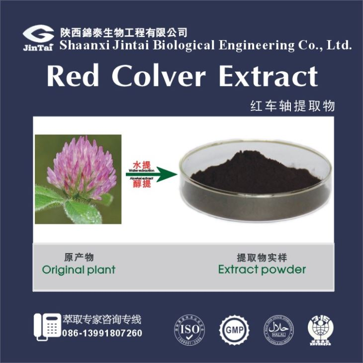High Quality Natural Red Clover Extract/Red Clover Flower Extract/Red Clover Powder Extract,Red Clover P.E.