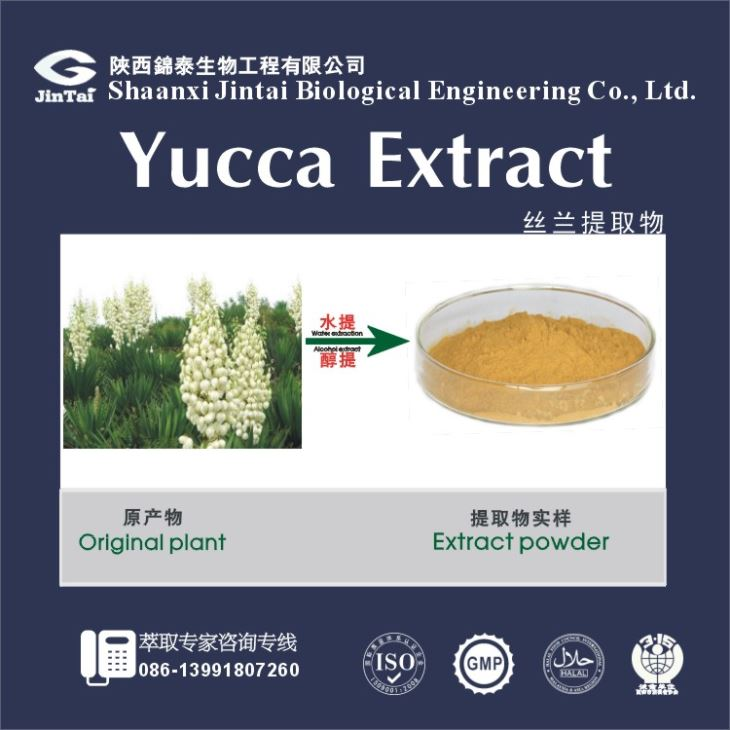 Extract yucca schidigera extract/Factory price yucca schidigera powder extract