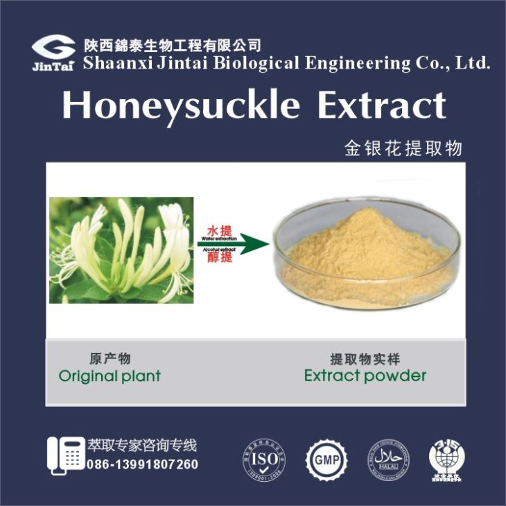 Natural herb powder 98% Chlorogenic Acid / HoneySuckle Flowers Extract