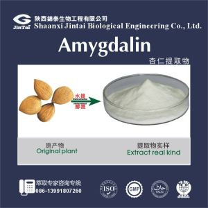 amygdalin powder/amygdalin extract/amygdalin 98%