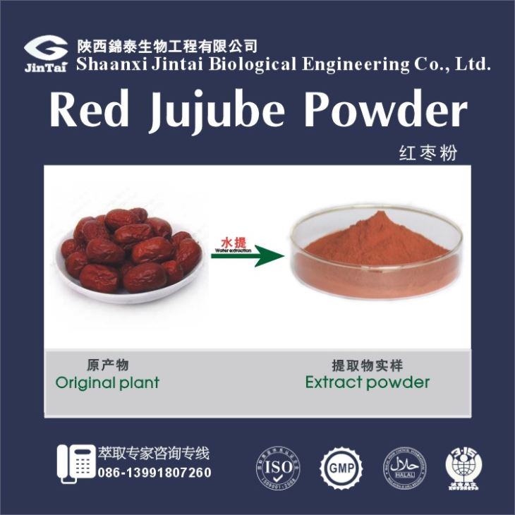 100% Pure Jujube Powder Chinese Red Dates Red Dates Extract/ High Quality Dates