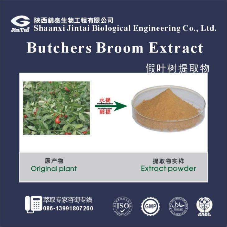 Natural Butcher broom extract , Butcher broom extract powder