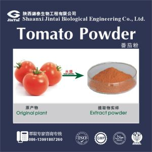Pure natural Tomato powder /Spray dried tomato powder