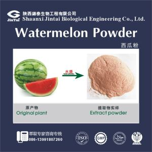Watermelon Powder Extract, Watermelon Powder, Watermelon extract