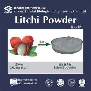High Quality Natural Litchi Powder/Nutritional Supplement Litchi chinensis Sonn Litchi Extract Powder/Litchi Fruit Powder