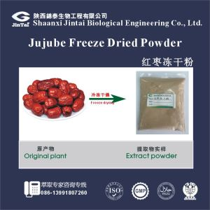 Instant Freeze Dried/Spray Dried Jujube dates Ziziphus zizyphus concentrated Fruit Juice Powder/Free