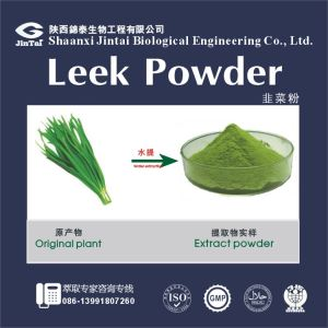 natural men healthy product Leek powder/natural Sexual enhanecing leek powder