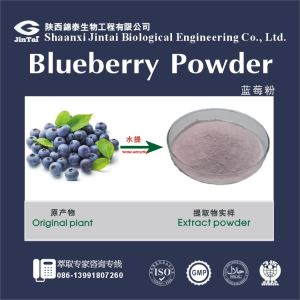 Blueberry Powder/huckleberry powder extract / cowberry extract / blueberry extract  bilberry juice extract powder