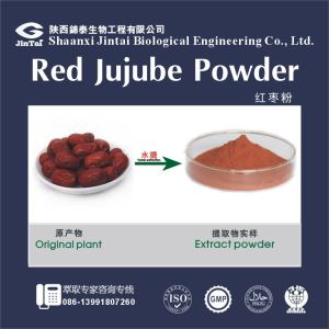 high quality best price red dates extract powder/Freeze Dried Red Dates Powder