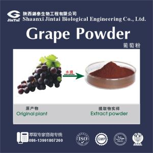 100% Natural fruit powder Grape fruit powder/Grape extract beverage powder