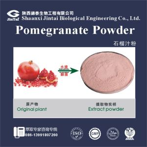 Freeze Dried Organic Pomegranate Juice Powder/Pomegranate Juice Powder for energy drinking