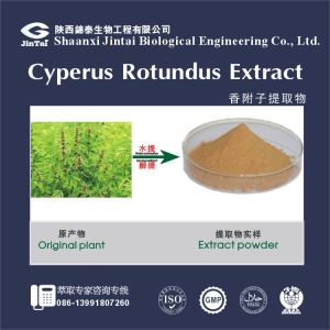 2016 Nutgrass powder,Rhizoma Cyperi powder extract /Cyperus rotundus extract