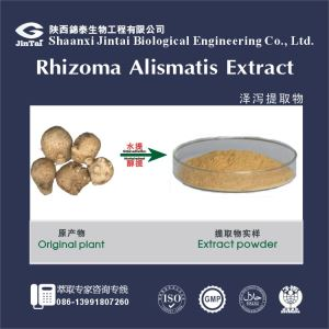 High Quality Alisma Extract / Alisma Orientalis Extract Powder,Alisma Orientalis powder 5:1