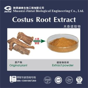Natural Herbal Elecampane Root Extract/Costustoot Root extract powder/Costustoot Root powder