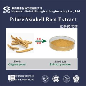 Factory Supply Codonopsis Pilosula Extract / Dangshen Root Extract/ Pure Natural Codonopsis Extract