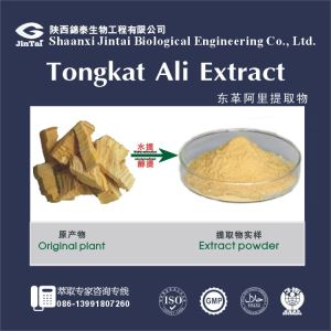 High quality Tongkat Ali Root Extract/Best Price of Tongkat Ali Extract/ Light yellow powder Tongkat Ali P.E.