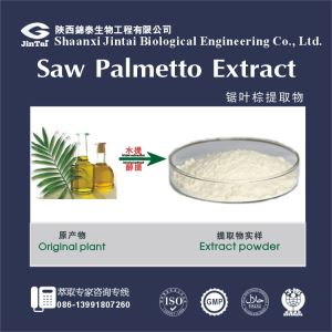 Saw Palmetto Extract/saw palmetto fruit extract for medicine and health food