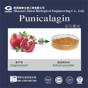 Pomegranate Rind Extract/Punicalagin Pomegranate Peel/Pomegranate seed Extract
