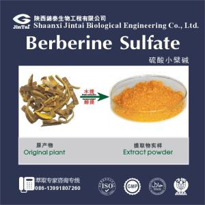 High purity 97% Berberine HCL powder, Natural Berberine Chloride powder, Berberine