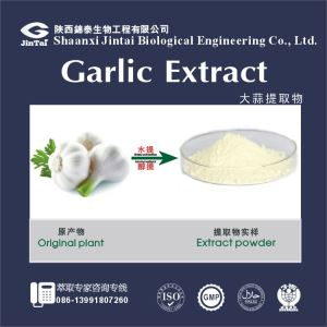 Garlic Allicin Plant Extract/Black Aged Garlic Extract, Black Garlic Extract
