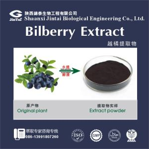 100% Natural Cranberry Powder Extract, Cranberry Fruit Powder Extract, Cranberry juice