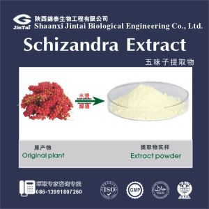 Schizandra Berry Fruit Extract/Schisandra chinensis extract powder with schizandrin 3%