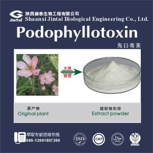 Pharmaceutical Use High Pure Podophyllotoxin 95 Hplc/ High Quality Podophyllotoxin 98%/Hot Sale Podophyllotoxin 98%/Organic A