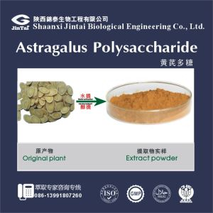 Asblood pressure astragalus extract/ diabetes products astragalus extract powder/ antioxidants capsules astragalus root extract