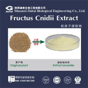 High Quality Wholesale Herbal Extract / Cnidium Monnieri Extract
