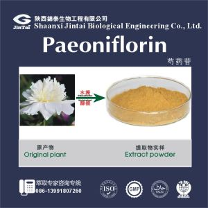 White Paeoniflorin Peony Root Extract for Health /natural tree peony bark extract for sale