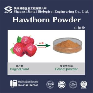 Hawthorn Extract Powder Total Flavonoid 10%-80% Uv/Hawthorne Berry Extract, 2.0%