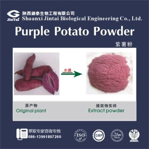 Natural Color Purple Sweet Potato Extract, Purple Sweet Potato Powder, purple sweet