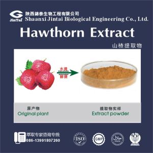 The Best Quality Hawthorn Berry Extract With Competitive Price