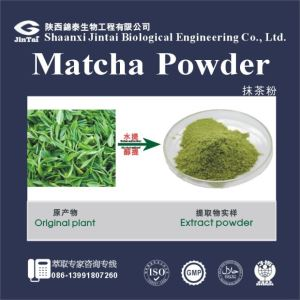 Nutural green tea powder matcha wholesale matcha