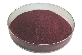high quality natrual 25% Bilberry Extract Anthocyanidin