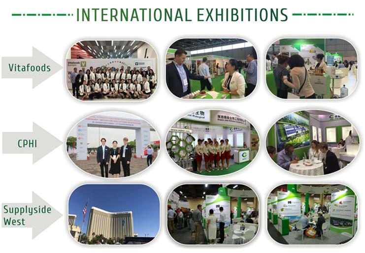3 International exhibitions.jpg