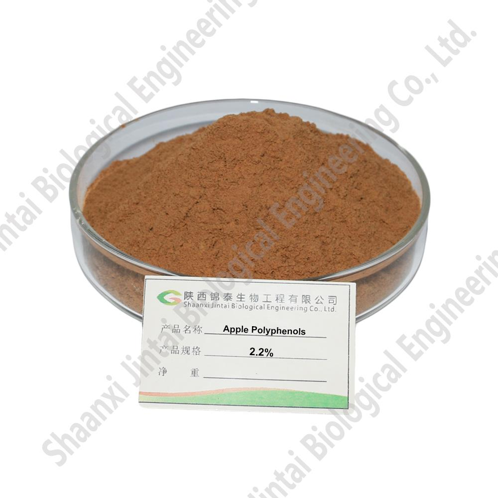 Apple Extract Polyphenol 1.jpg