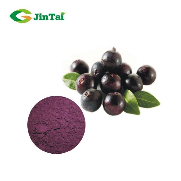 Hot Sale Wholesale Natural Acai Berry Powder