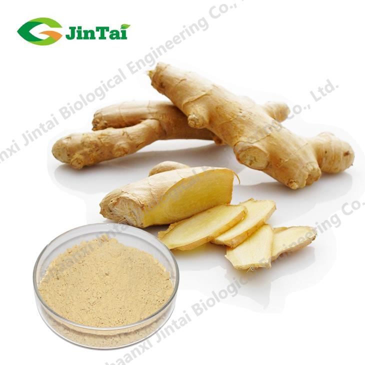 Factory supply fresh ginger root powder/Ginger Powder with Best Quality
