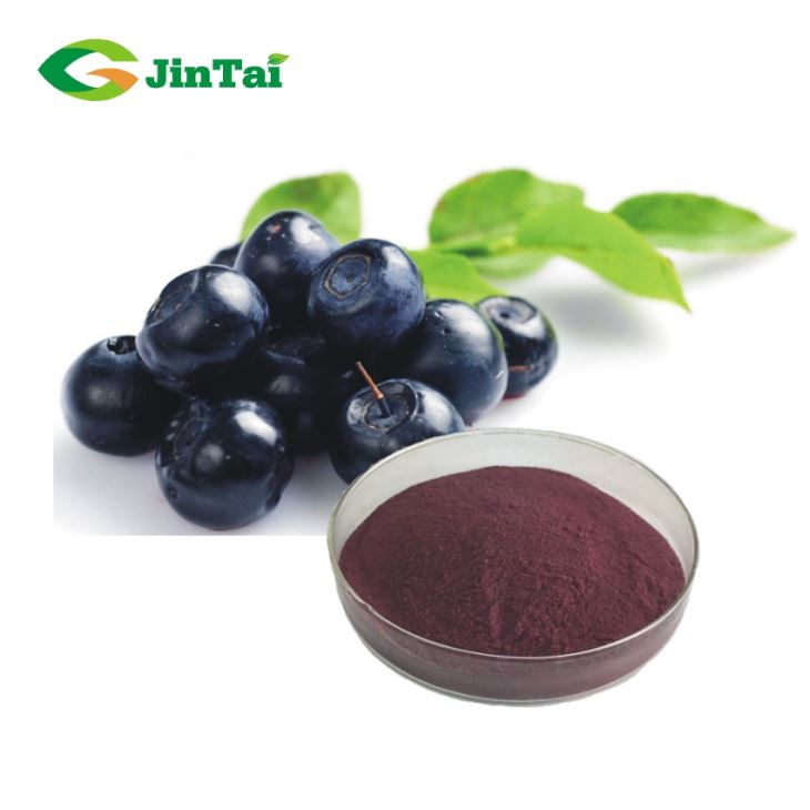 High Quality Natural 25% Bilberry Extract Anthocyanidin