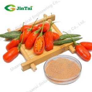 Best quality Wolfberry extract/goji berry freeze dried powder/Freeze Dried Wolfberry Powder