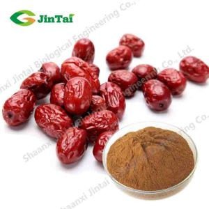 Instant Freeze Dried/Spray Dried Jujube dates Ziziphus zizyphus concentrated Fruit Juice Powder/Freeze Dried Jujube Powder