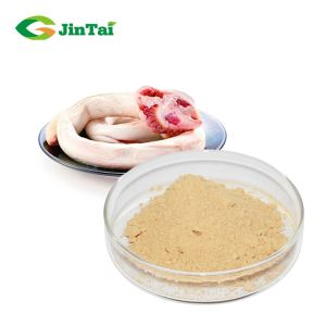 Freeze Dried Pizzles Powder for sexual enhancement men health care