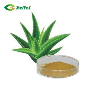 High Quality 20% 90% Aloe Vera Powder