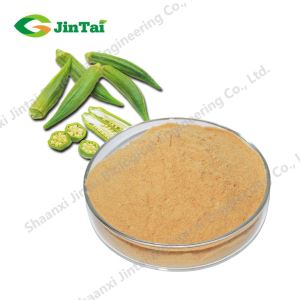 Dried Okra Powder /Okra Extract / Abelmoschus esculentus Moench