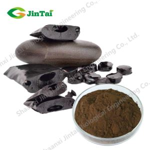 organic black shilajit powder/best shilajit extract/shilajit in pakistan