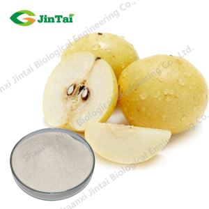 Natural Snow Pear Fruit Juice Powder/Snow Pear Powder,Pyrus Nivalis Powder,Pear Extract